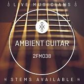 2FM038 Ambient Guitar