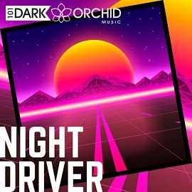 101DOM073 Night Driver