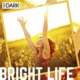 101DOM004 - Bright Life