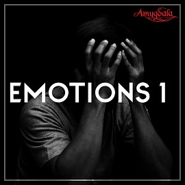 AMY010 Emotions 1