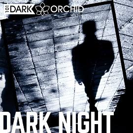 101DOM094 Dark Night