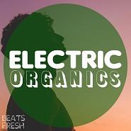 BF 238 Electric Organics