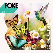POKE 082 Pretty Things