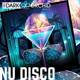 101DOM081 Nu Disco