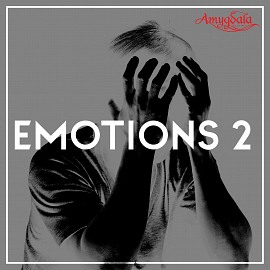 AMY011 Emotions 2