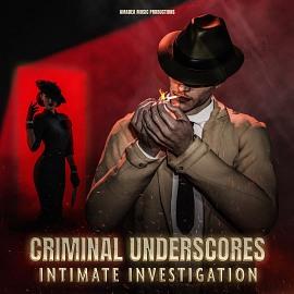 AMP 017 Criminal Underscores: Intimate Investigation