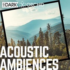 101DOM116 Acoustic Ambiences