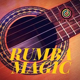LMC8010 Rumba Magic