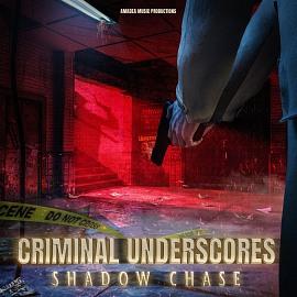 AMP 030 Criminal Underscores: Shadow Chase