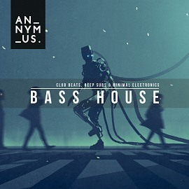 AR017 Bass House