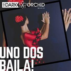 101DOM095 Uno Dos Baila!