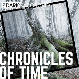 101DOM068 Chronicles Of Time