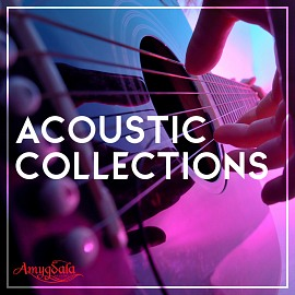 AMY006 Acoustic Collections
