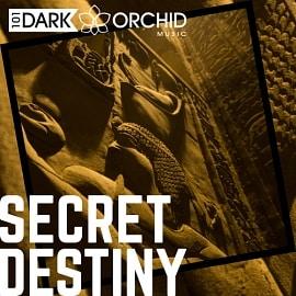 101DOM070 Secret Destiny