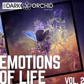 101DOM105 Emotions Of Life Vol. 2