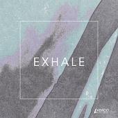 AB-C0302 Exhale