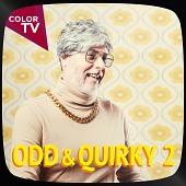 CTV1108 Odd & Quirky 2