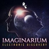 NAKD012 Imaginarium - Electronic Discovery