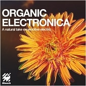 BLE543_Organic Electronica