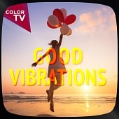 CTV1114 Good Vibrations