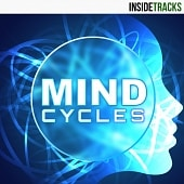 INSD 130 Mind Cycles
