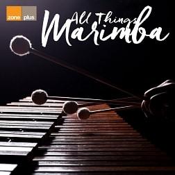 ZONE 598 All Things Marimba
