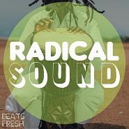 BF 011 Radical Sound